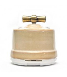 Выключатель поворотный Salvador для наружного монтажа проходной, Бежевый